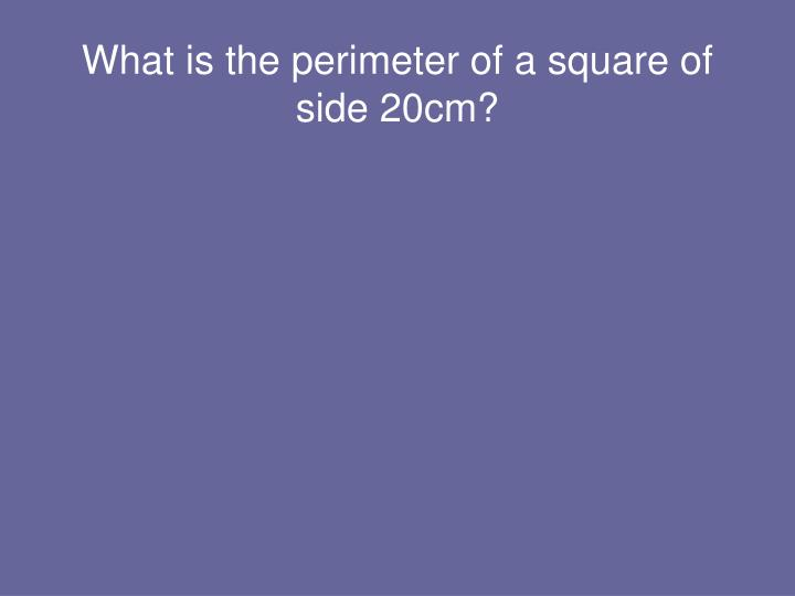 What is the perimeter of a square of side 20cm?