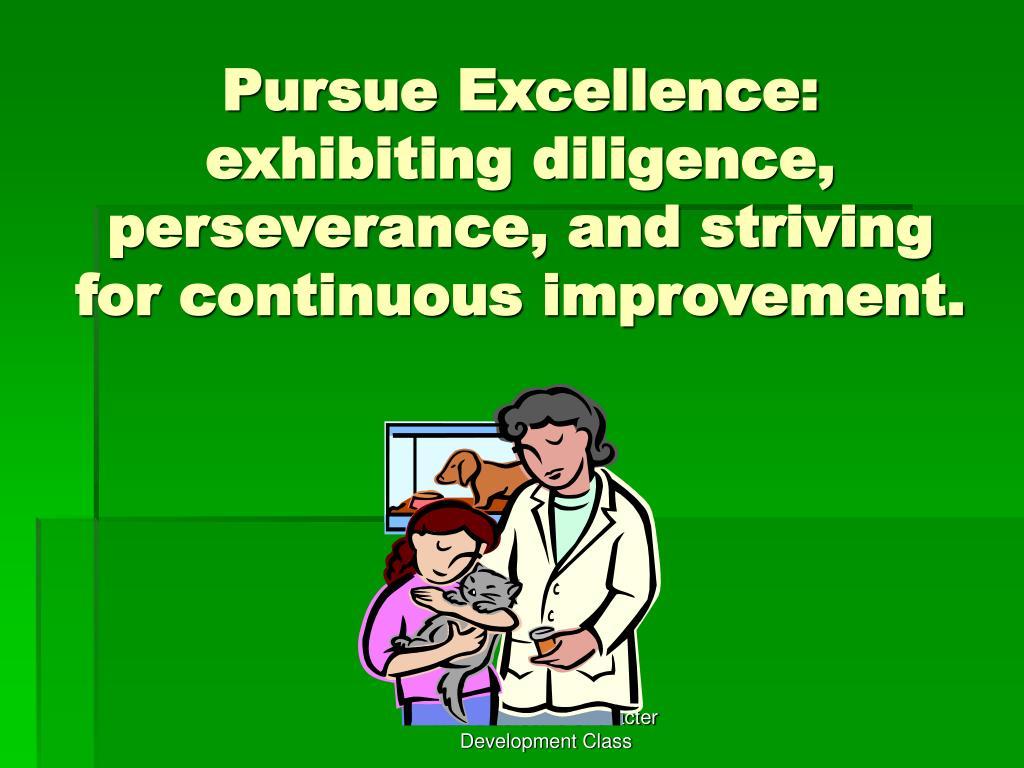 Pursue Excellence: