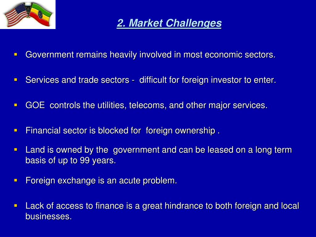 2. Market Challenges