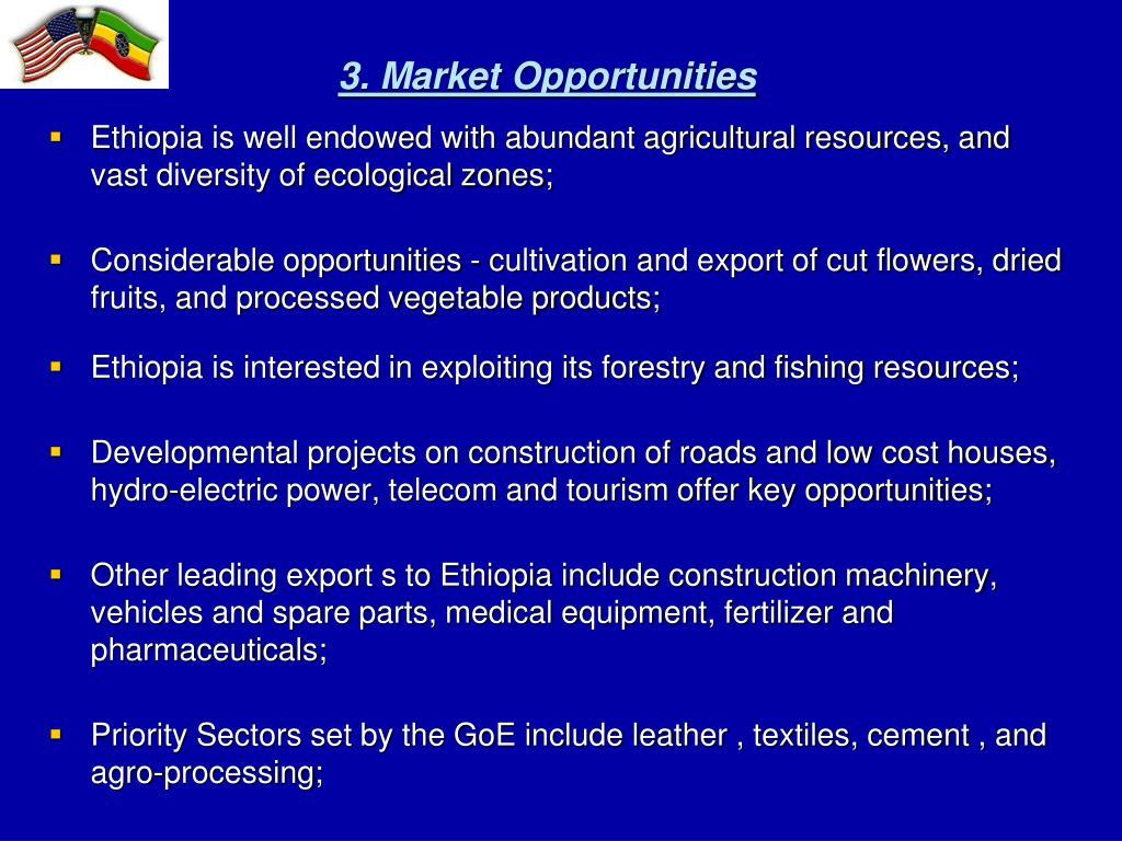 3. Market Opportunities