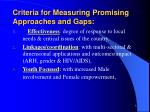 criteria for measuring promising approaches and gaps