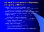 institutional arrangements to implement youth policy and issues33