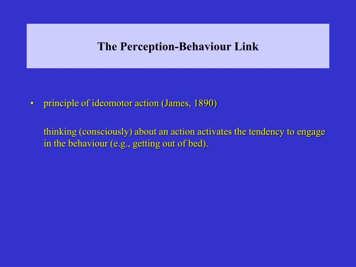 The Perception-Behaviour Link