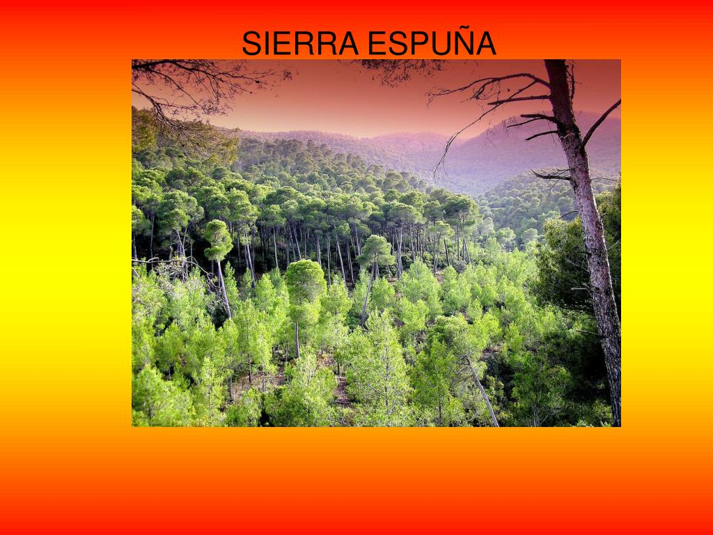 SIERRA ESPUÑA