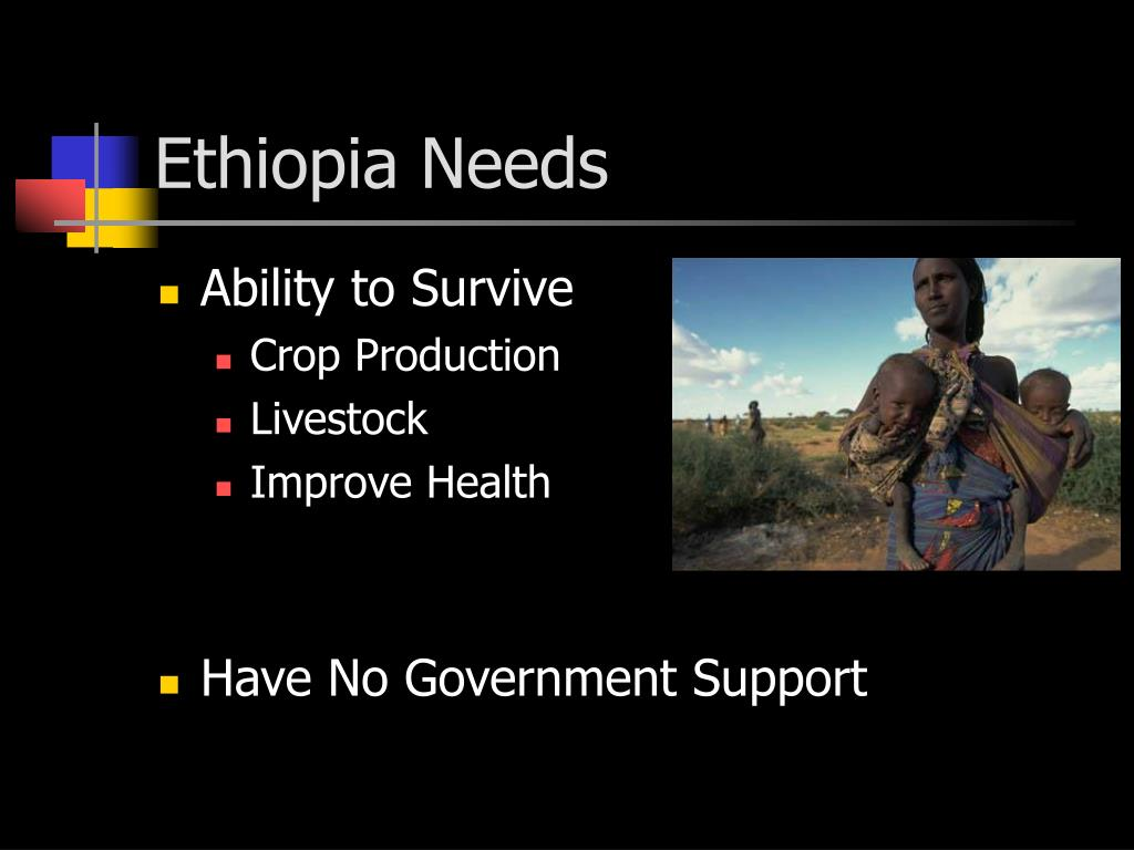 Ethiopia Needs