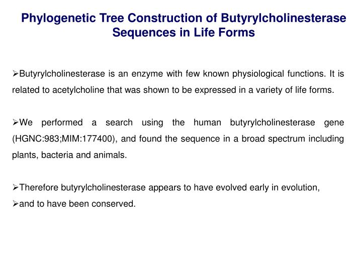 Phylogenetic Tree Construction of Butyrylcholinesterase Sequences in Life Forms