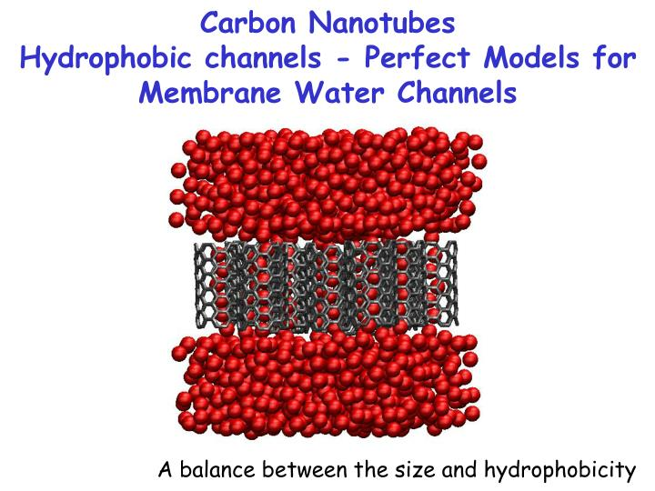 Carbon nanotubes hydrophobic channels perfect models for membrane water channels