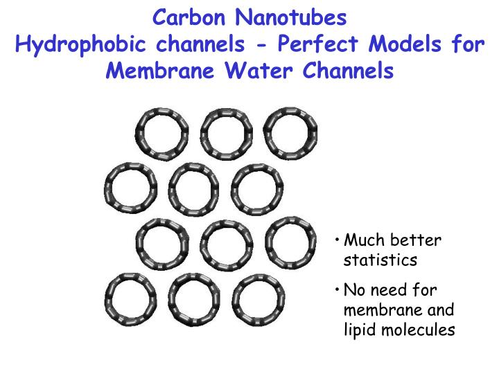 Carbon nanotubes hydrophobic channels perfect models for membrane water channels1