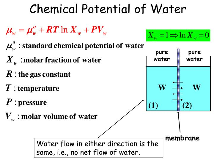 Chemical Potential of Water