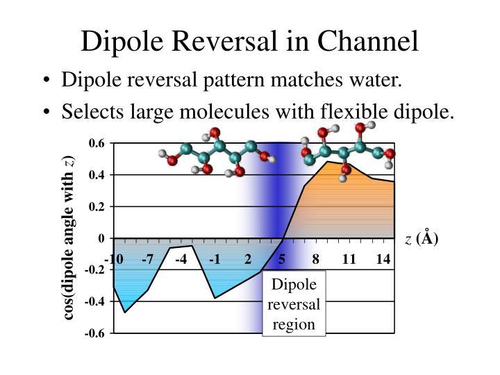 Dipole Reversal in Channel