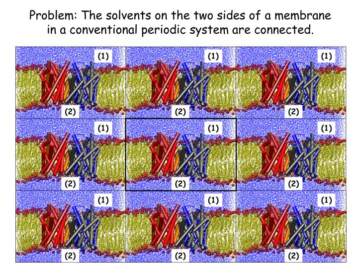 Problem: The solvents on the two sides of a membrane in a conventional periodic system are connected.