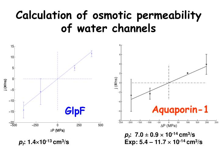 Calculation of osmotic permeability of water channels
