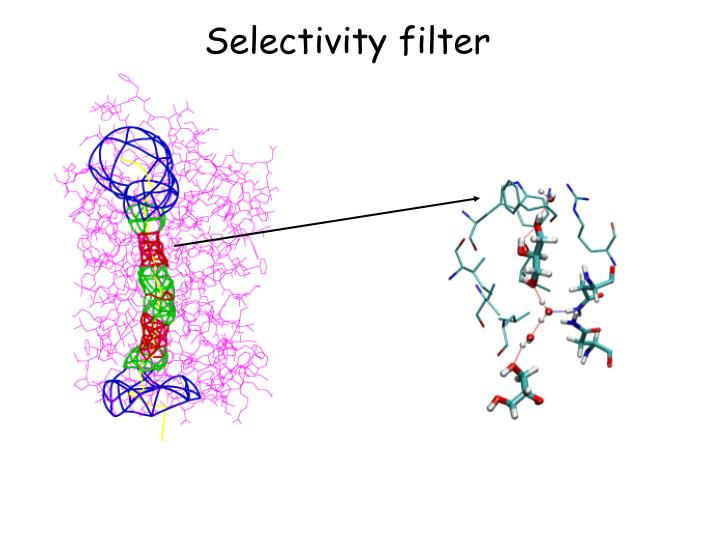 Selectivity filter