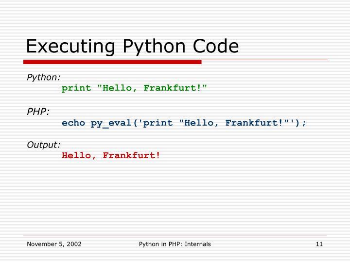Executing Python Code