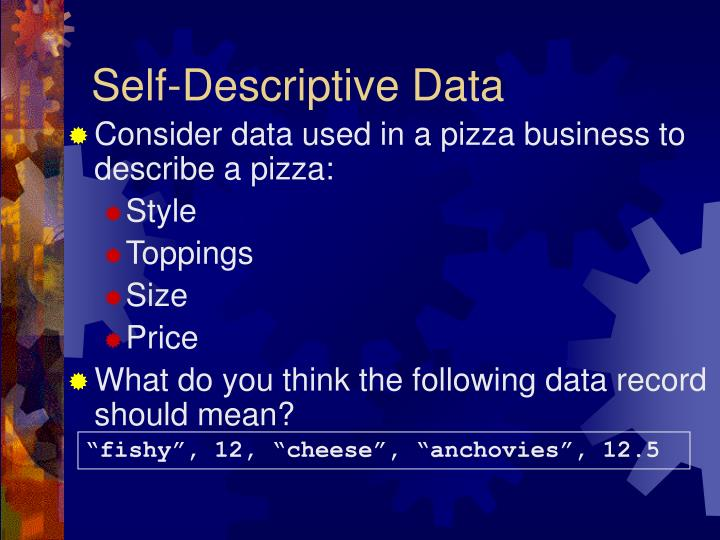 Self-Descriptive Data