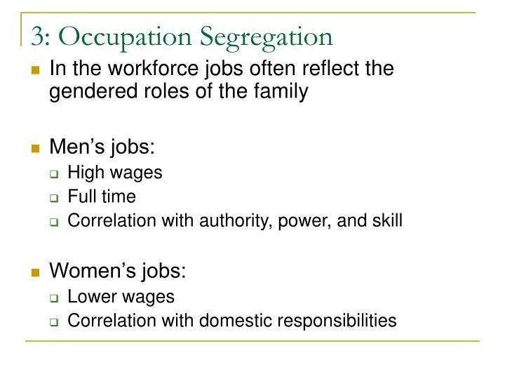 3: Occupation Segregation