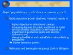 rapid population growth slows economic growth