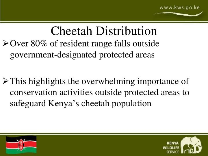 Cheetah Distribution