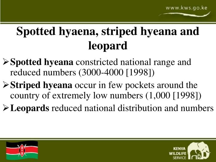 Spotted hyaena, striped hyeana and leopard