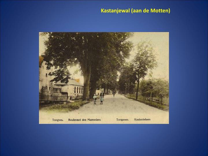 Kastanjewal (aan de Motten)