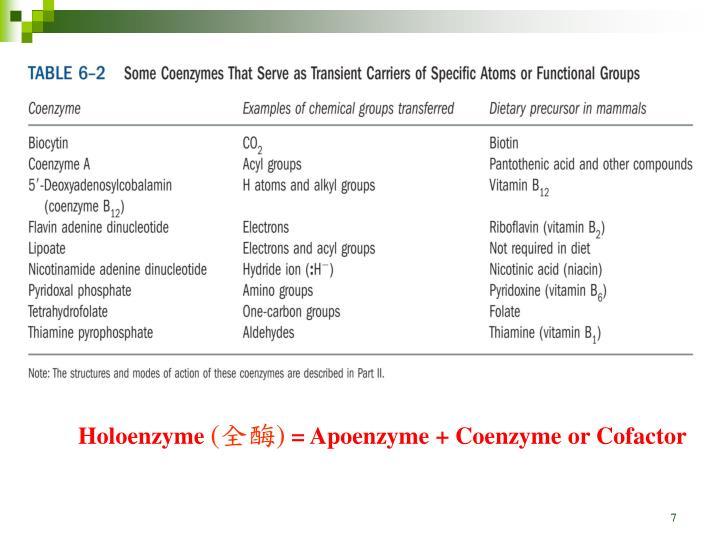 Holoenzyme