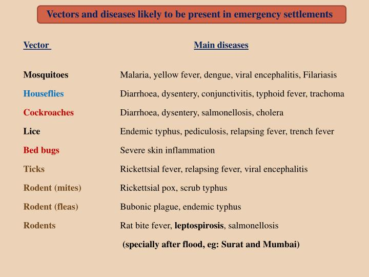 Vectors and diseases likely to be present in emergency settlements