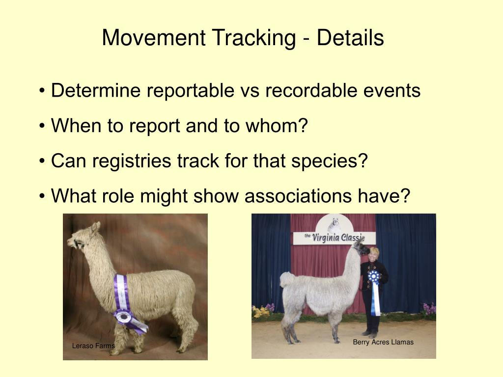 Movement Tracking - Details