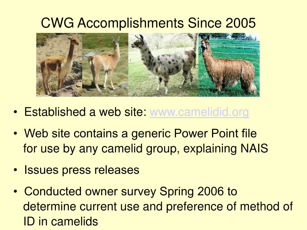 CWG Accomplishments Since 2005