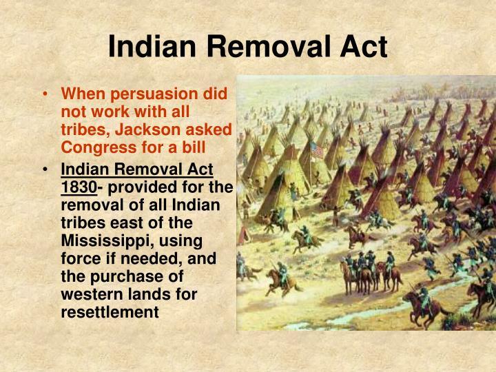 Indian Removal Act PPT - Jacksonian Era: ...