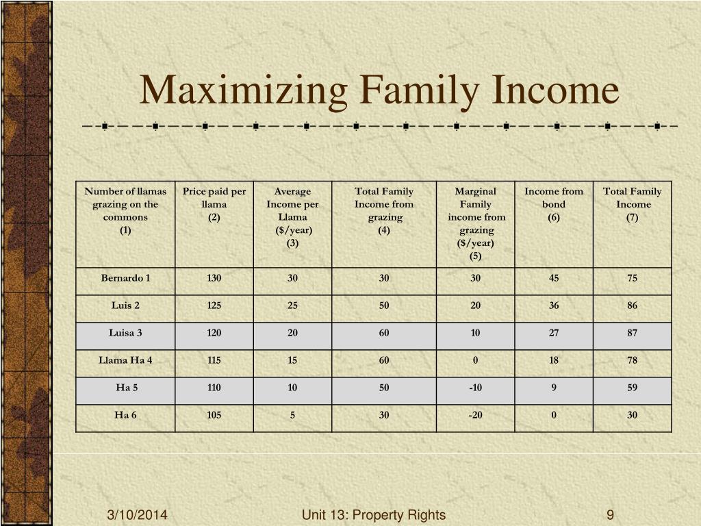 Maximizing Family Income