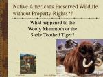 native americans preserved wildlife without property rights