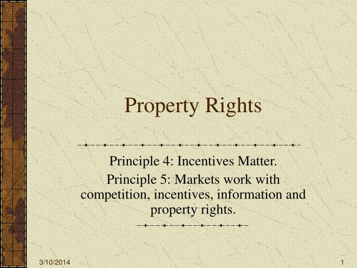 Property rights l.jpg
