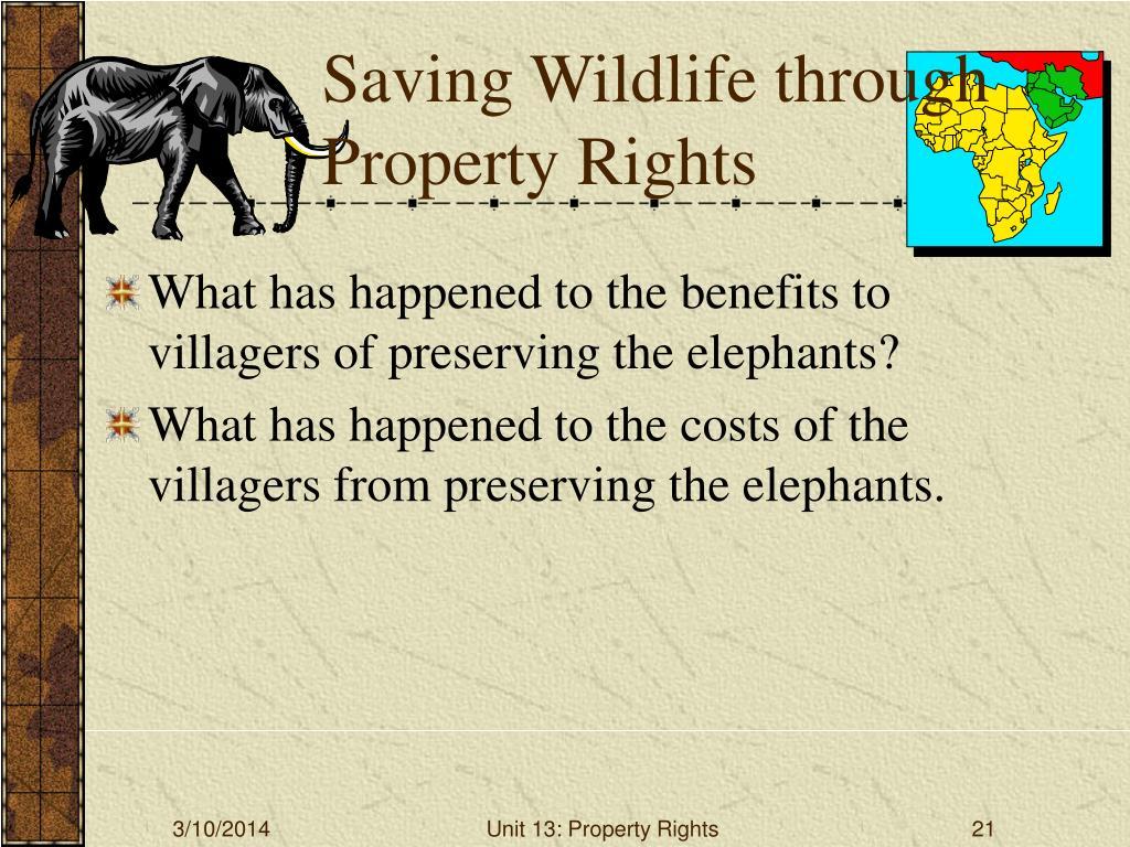 Saving Wildlife through Property Rights