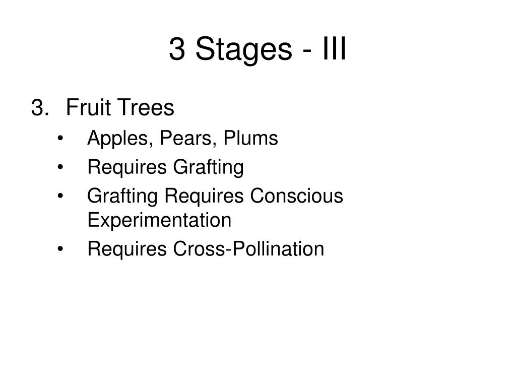 3 Stages - III