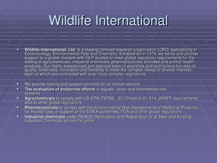 Wildlife International