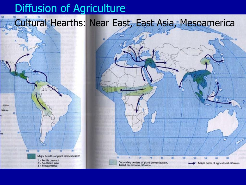 Diffusion of Agriculture