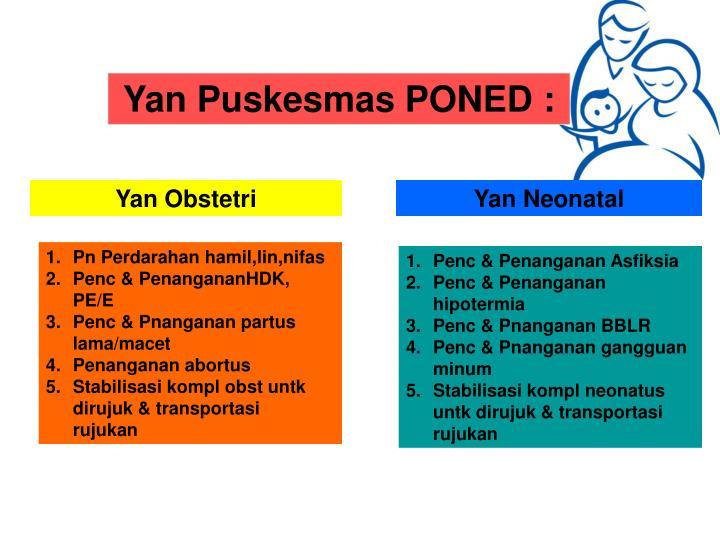 Yan Puskesmas PONED :