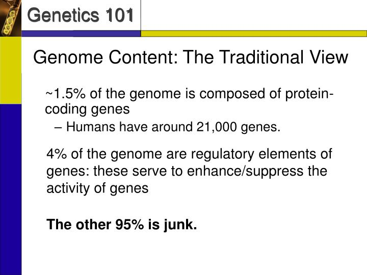 Genome Content: The Traditional View