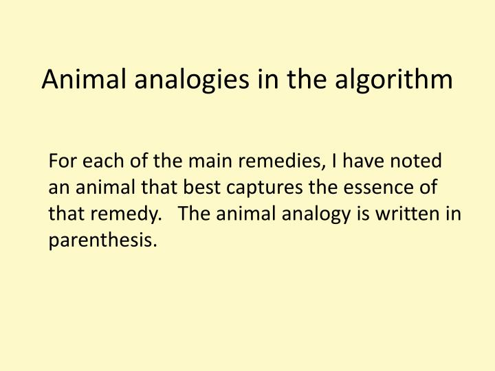 Animal analogies in the algorithm