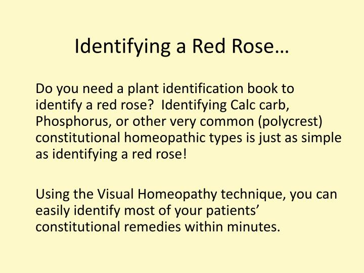 Identifying a Red Rose…