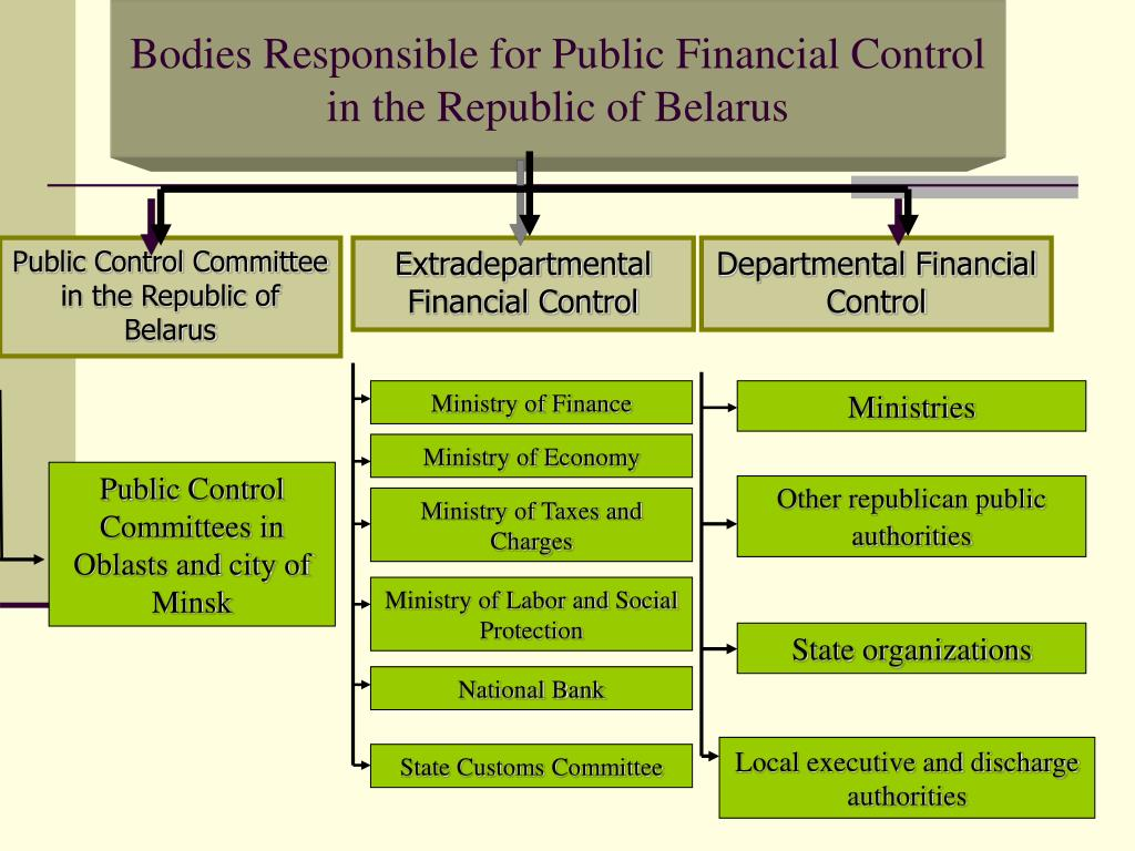 Bodies Responsible for Public Financial Control in the Republic of Belarus