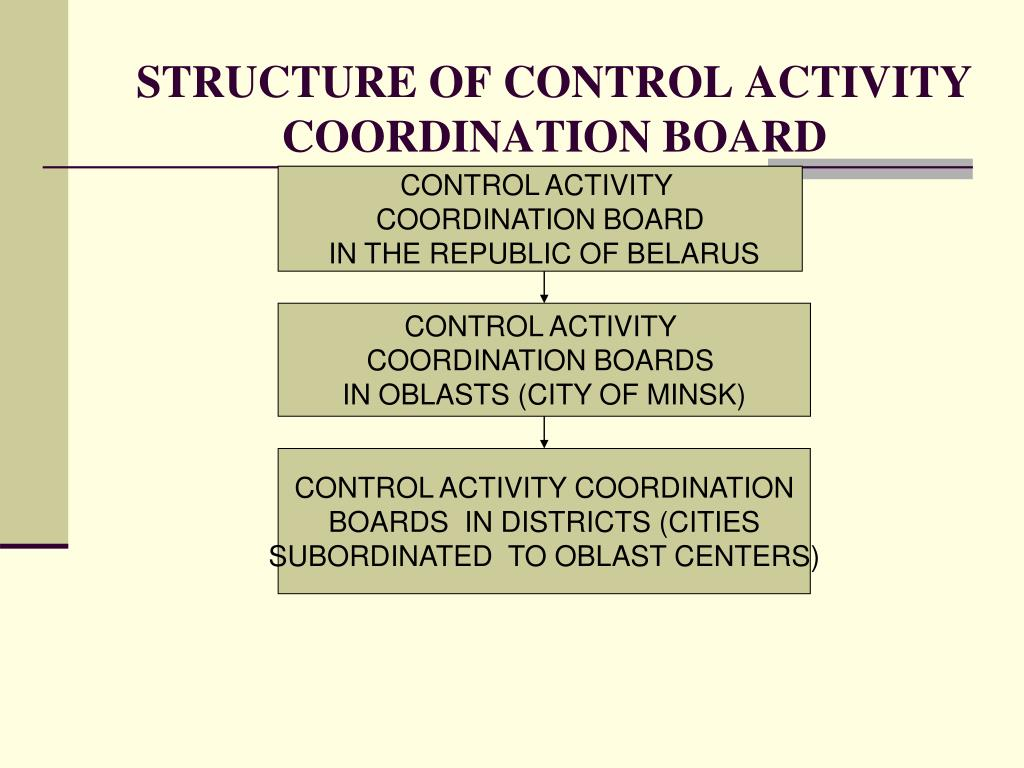 STRUCTURE OF CONTROL ACTIVITY COORDINATION BOARD