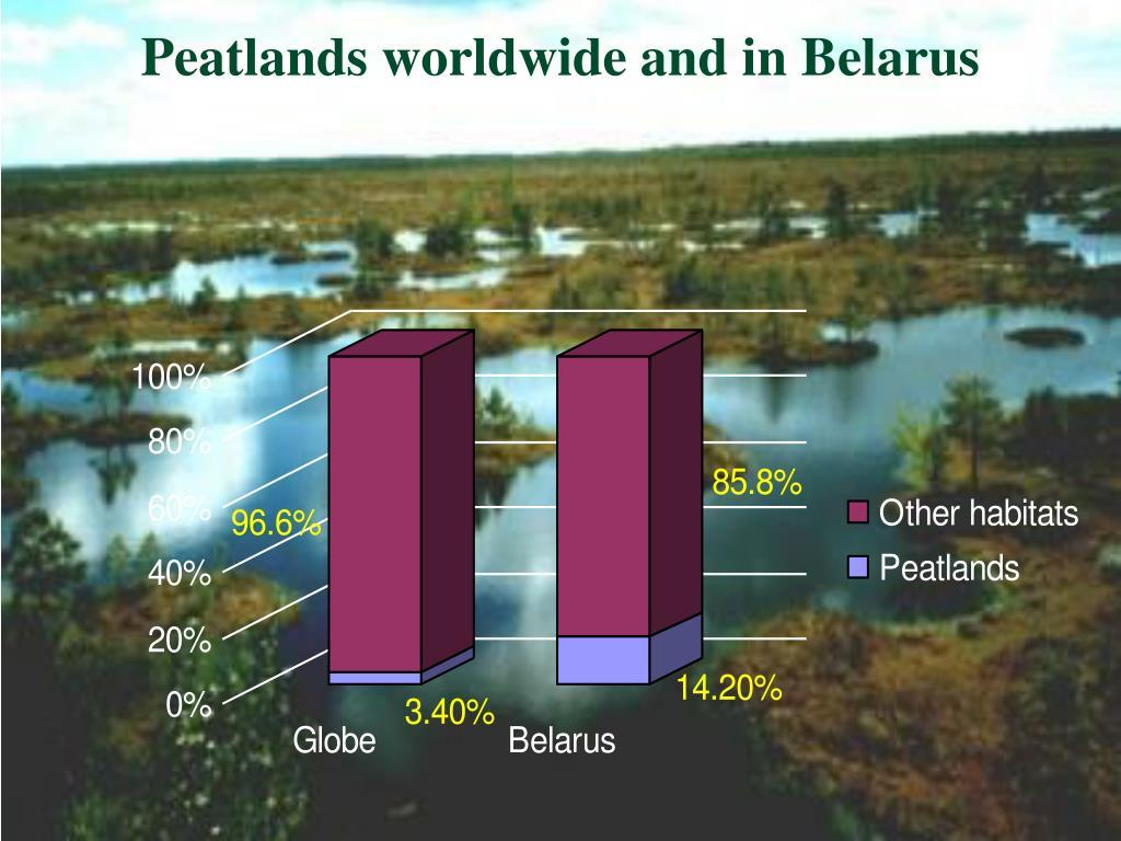Peatlands worldwide and in Belarus