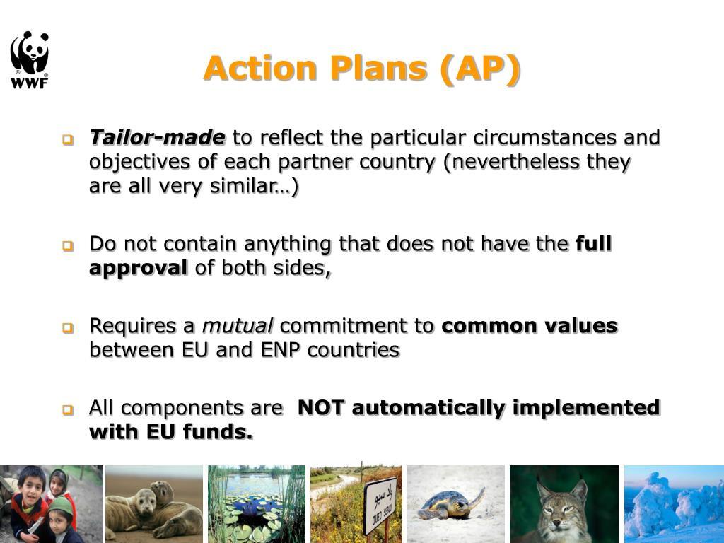 Action Plans (AP)