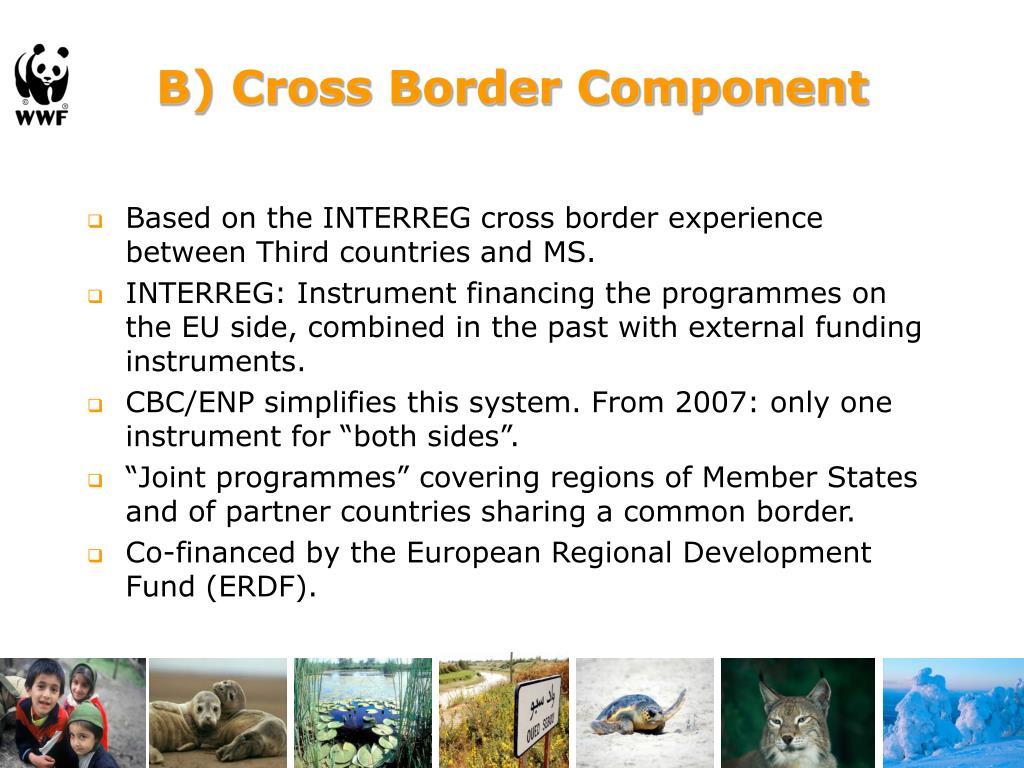 B) Cross Border Component