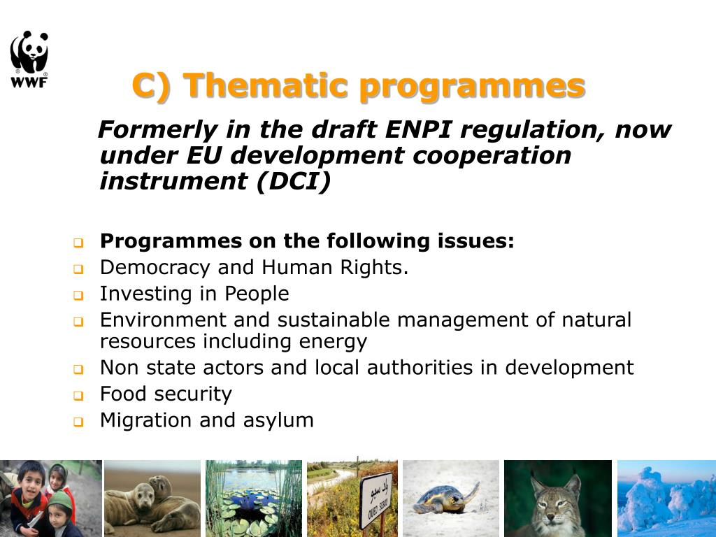 C) Thematic programmes