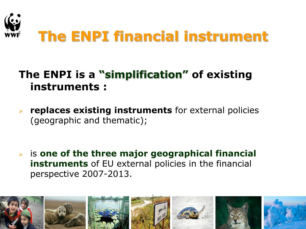 The ENPI financial instrument