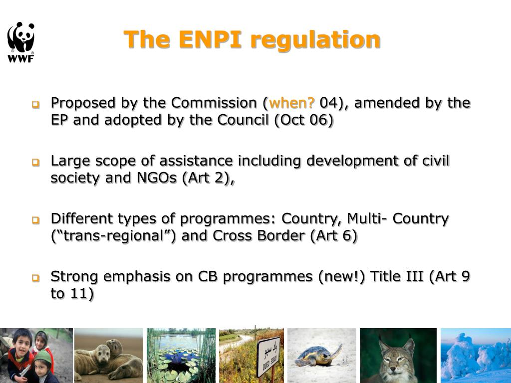 The ENPI regulation