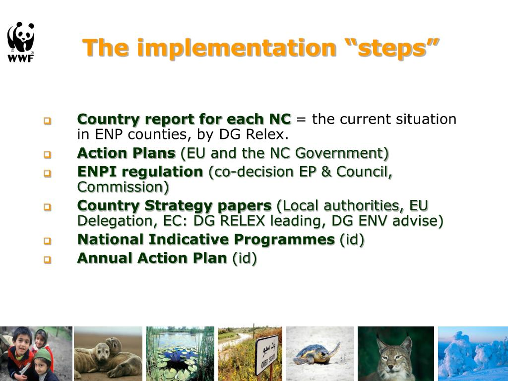 "The implementation ""steps"""
