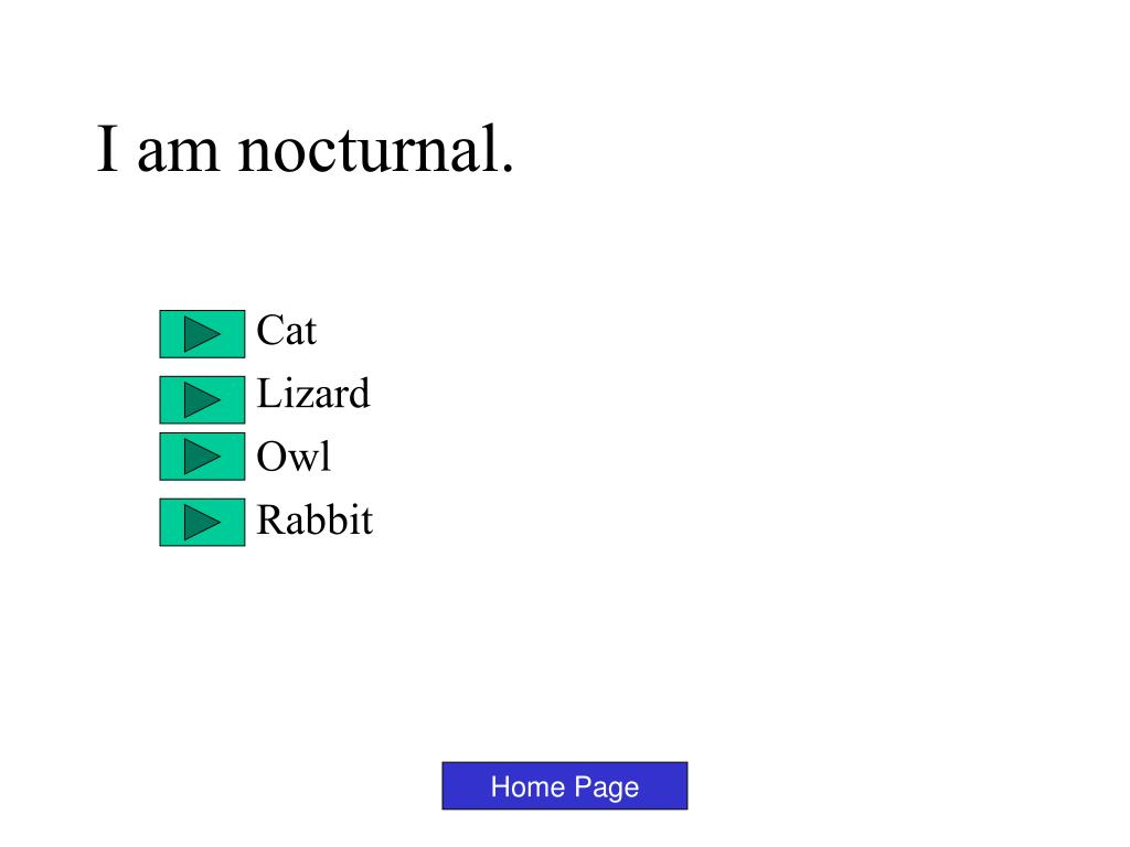 I am nocturnal.